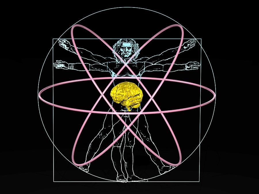 Vitruvian Man Photograph - Human Intelligence by Laguna Design