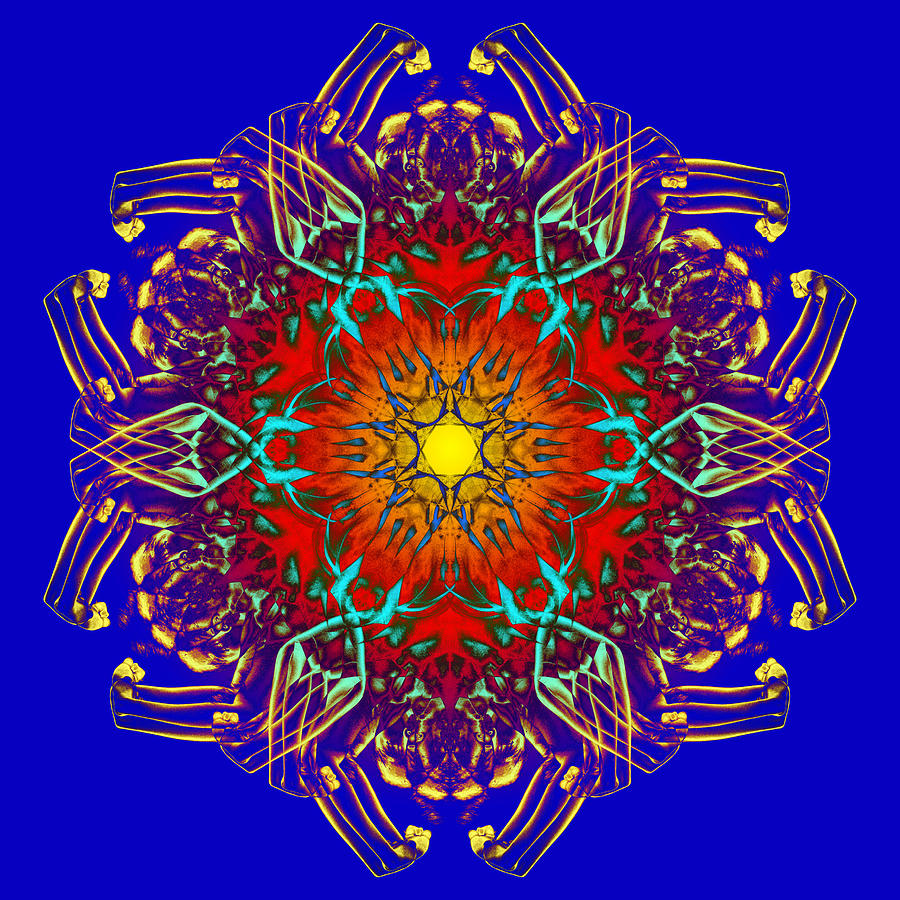 Psychedelic Photograph - Humandala 1 by David Kleinsasser