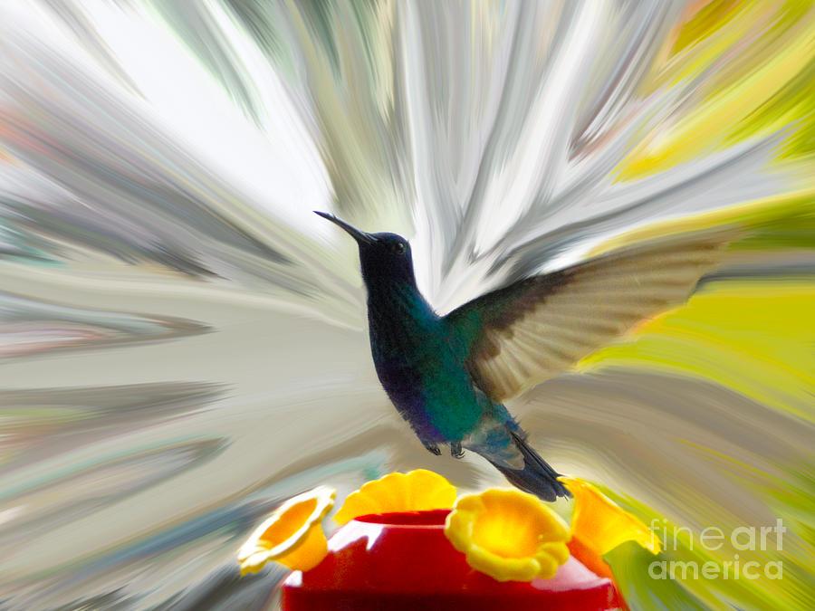 Canadian Photograph - Hummingbird Series Vii by Al Bourassa