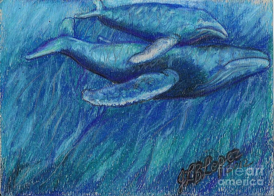 Grey Whales Drawing - Humpback Whale Mother And Calf by Jamey Balester