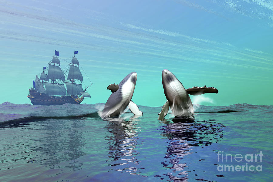 Whale Digital Art - Humpback Whales Breach The Ocean by Corey Ford
