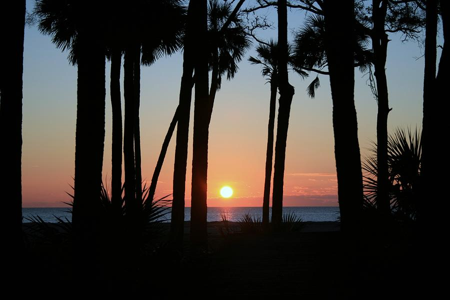 Hunting Island Sunrise by Matthew Winn