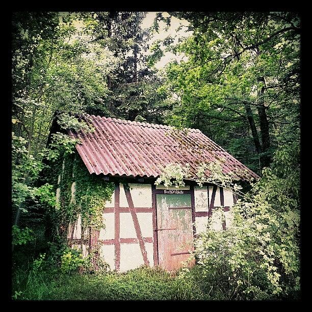 Hut Photograph - Hut In The Forest by Matthias Hauser