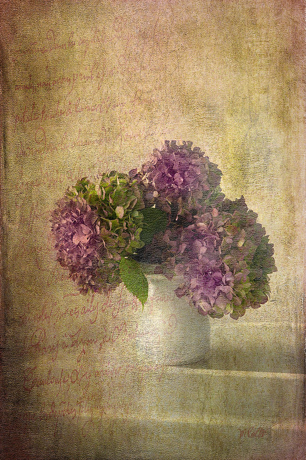 Still Life Mixed Media - Hydrangea Blossoms by Michael Petrizzo