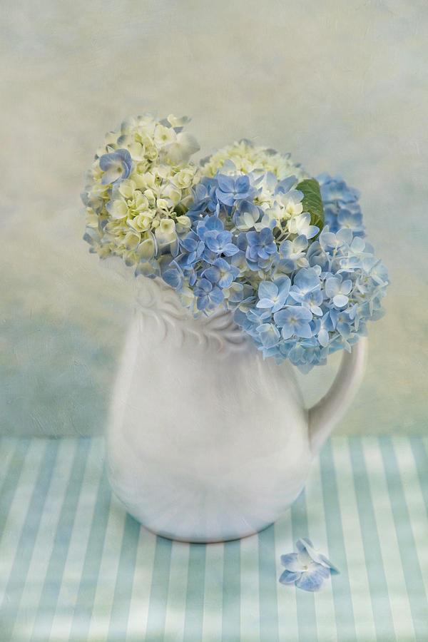 Hydrangea Morning by Robin-Lee Vieira