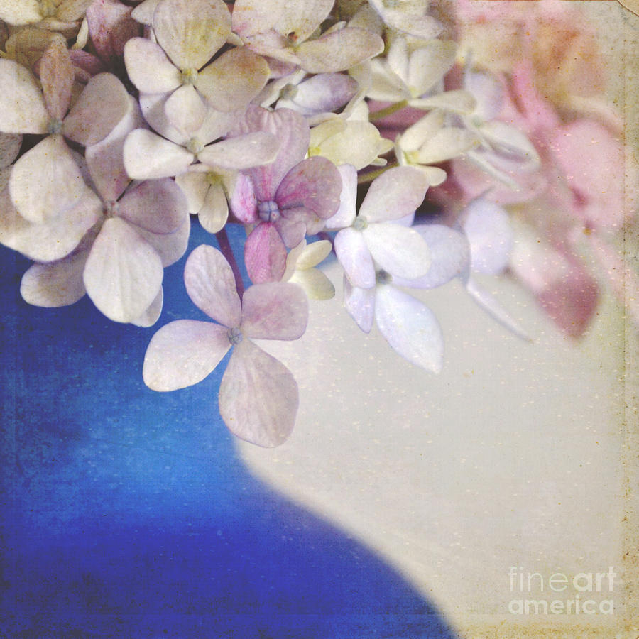 Hydrangeas Photograph - Hydrangeas In Deep Blue Vase by Lyn Randle