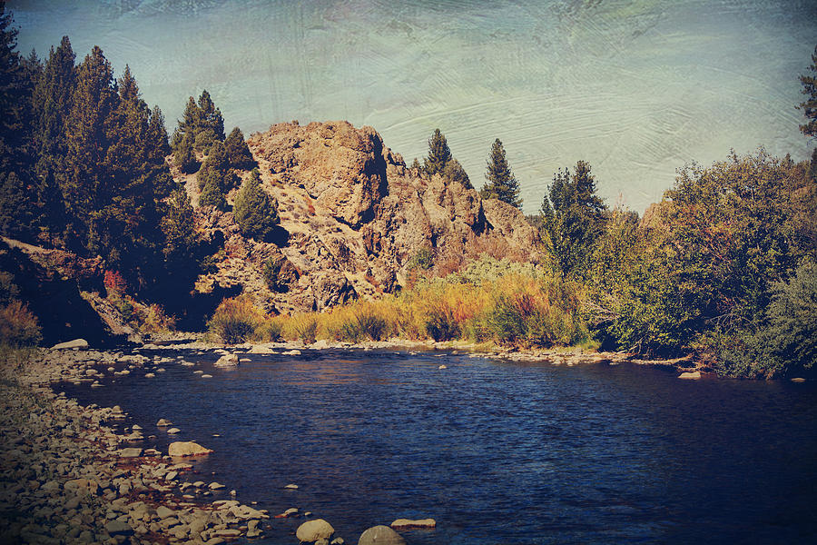 Carson River Photograph - I Drift Away by Laurie Search
