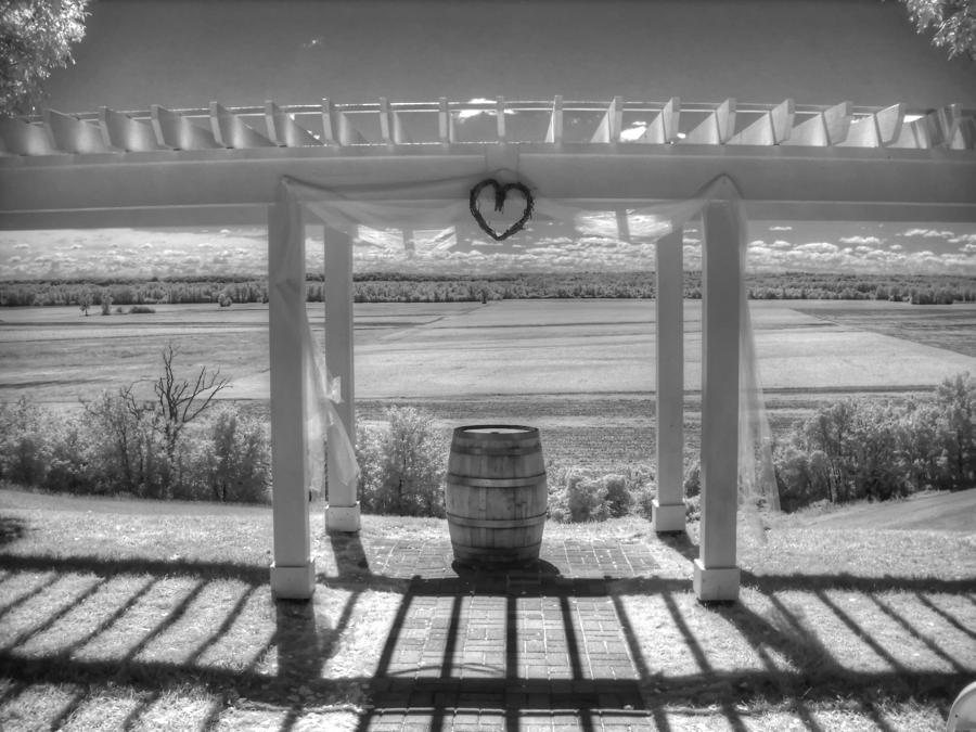 Augusta Missouri Photograph - I Love Wine by Jane Linders