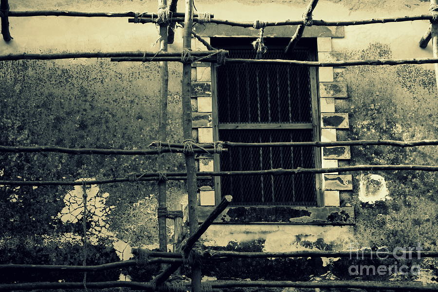 Wall Photograph - I See You by Vishakha Bhagat