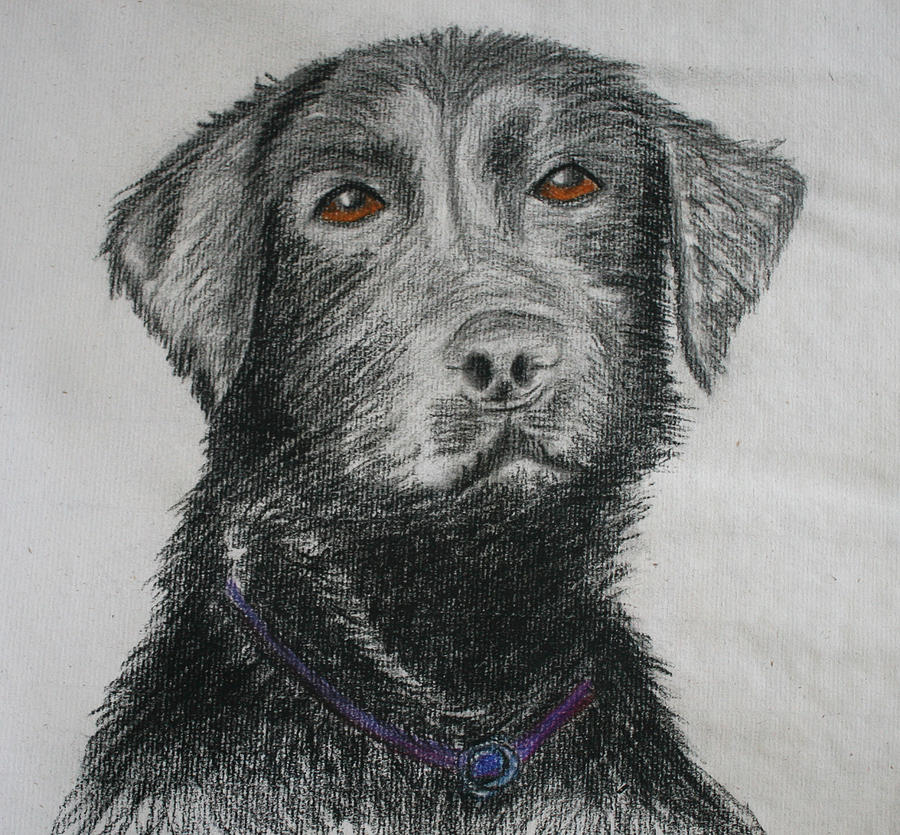 Dog Pastel - I Want To Play by M Valeriano