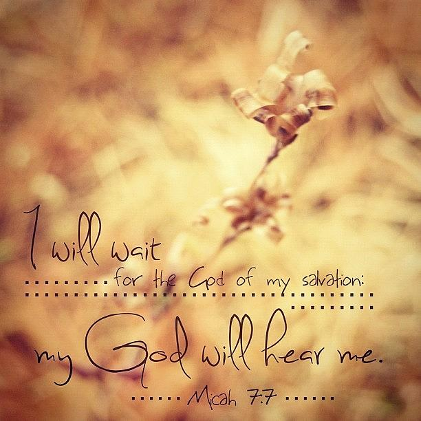 Love Photograph - ...i Will Wait For The God Of My by Traci Beeson