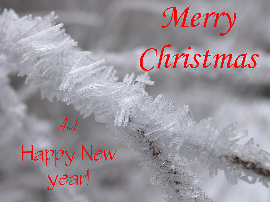Christmas Photograph - Ice Crystal Christmas by DeeLon Merritt
