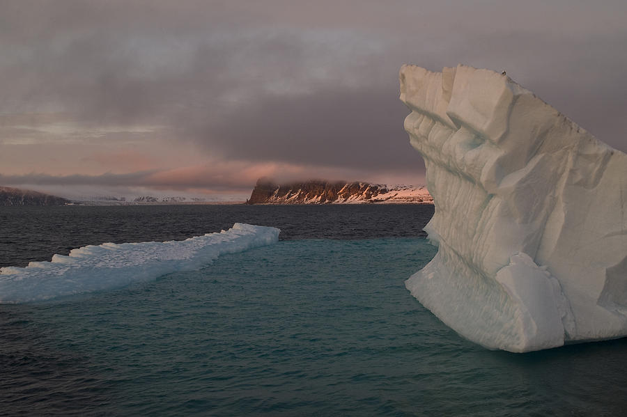 Svalbard Photograph - Ice Formations Float In Blue Water by Norbert Rosing
