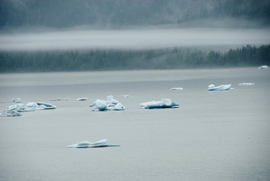 Usa Photograph - Icebergs Floating In The Sea by James Forte