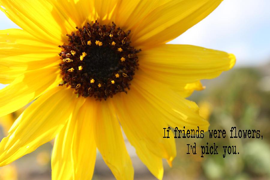 Flowers Photograph - If Friends Were Flowers by Caroline Lomeli