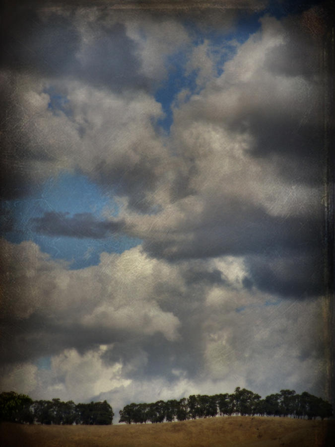 San Leandro Photograph - If The World Ends Today by Laurie Search
