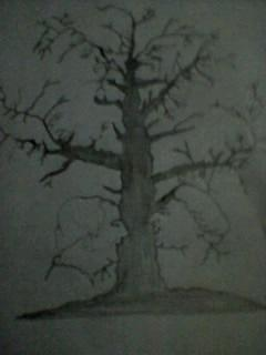 Illusion Tree Show Many Faces Drawing by Arun Arya
