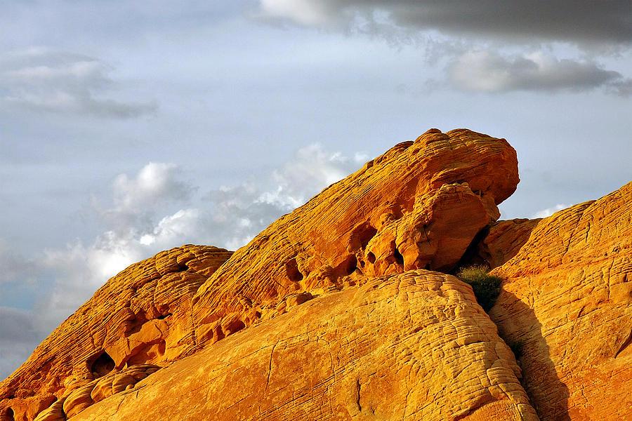 Nevada Photograph - Imagination Runs Wild - Valley Of Fire Nevada by Christine Till