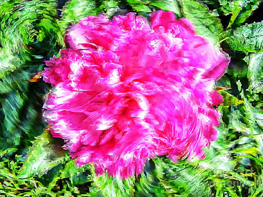 Pink Digital Art - Impressionistic  Peony by Barbara Griffin