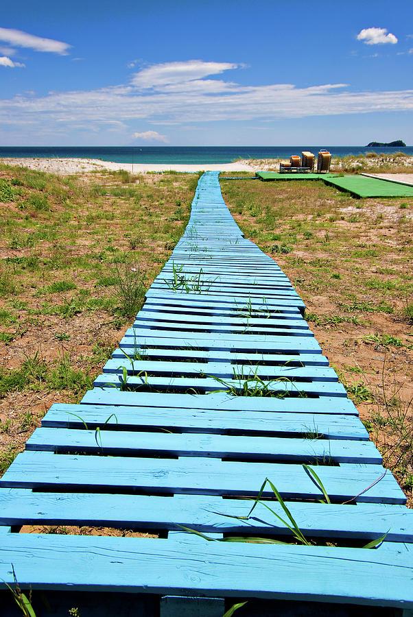 Boardwalk Photograph - Improvised Boardwalk by Meirion Matthias