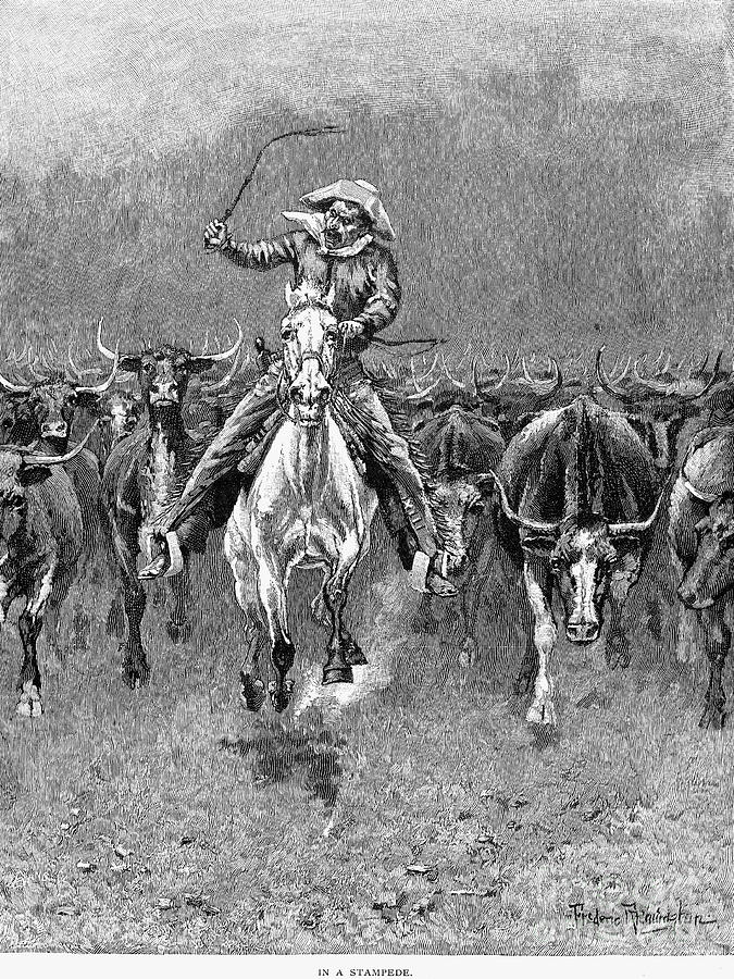 1888 Photograph - In A Stampede by Granger