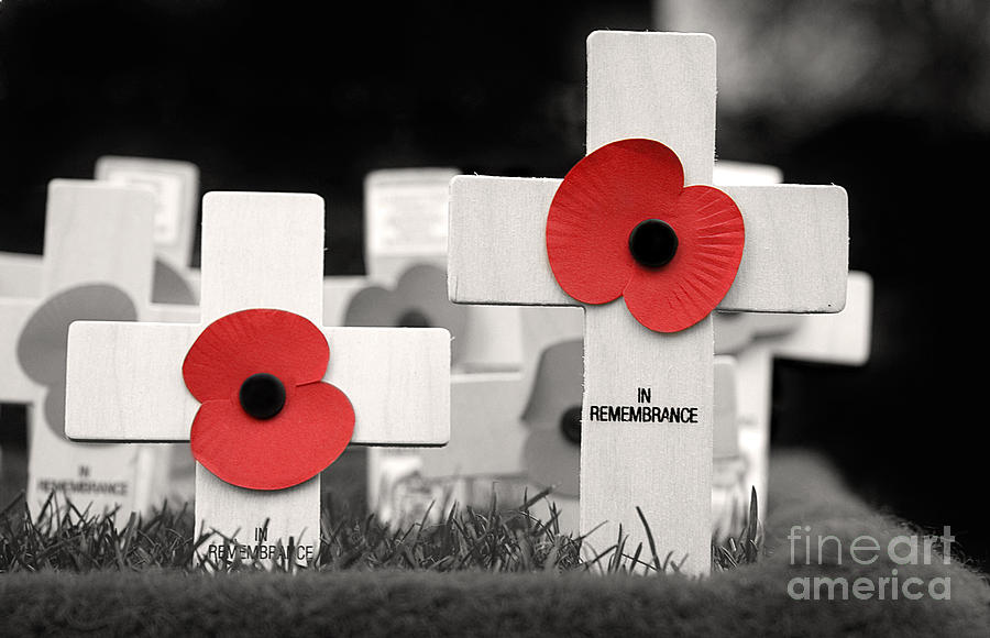 Airforce Photograph - In Remembrance by Jane Rix