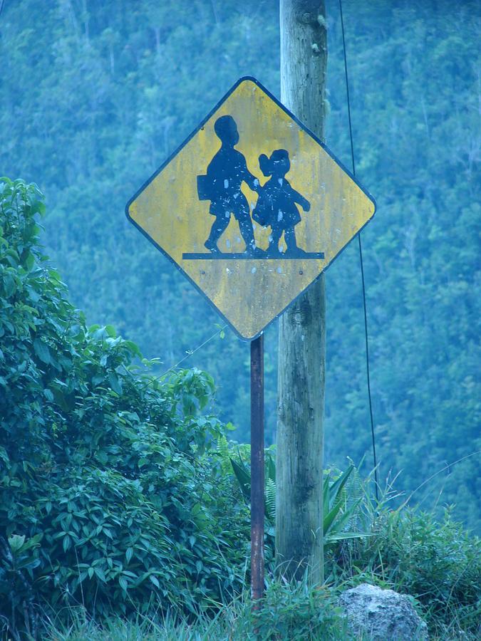 Jamaica Photograph - In The Hills Of Saint Ann Parish by K Walker