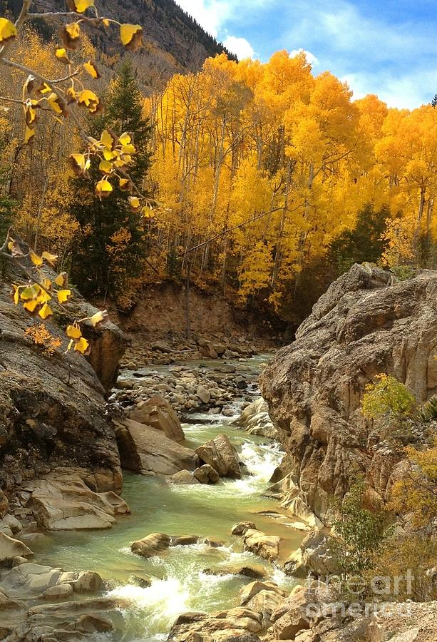 Rockies Photograph - In The Rockies by Phil Huettner