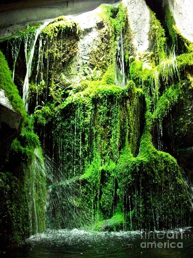 Indoor Waterfall Photograph by AEryn Arquette
