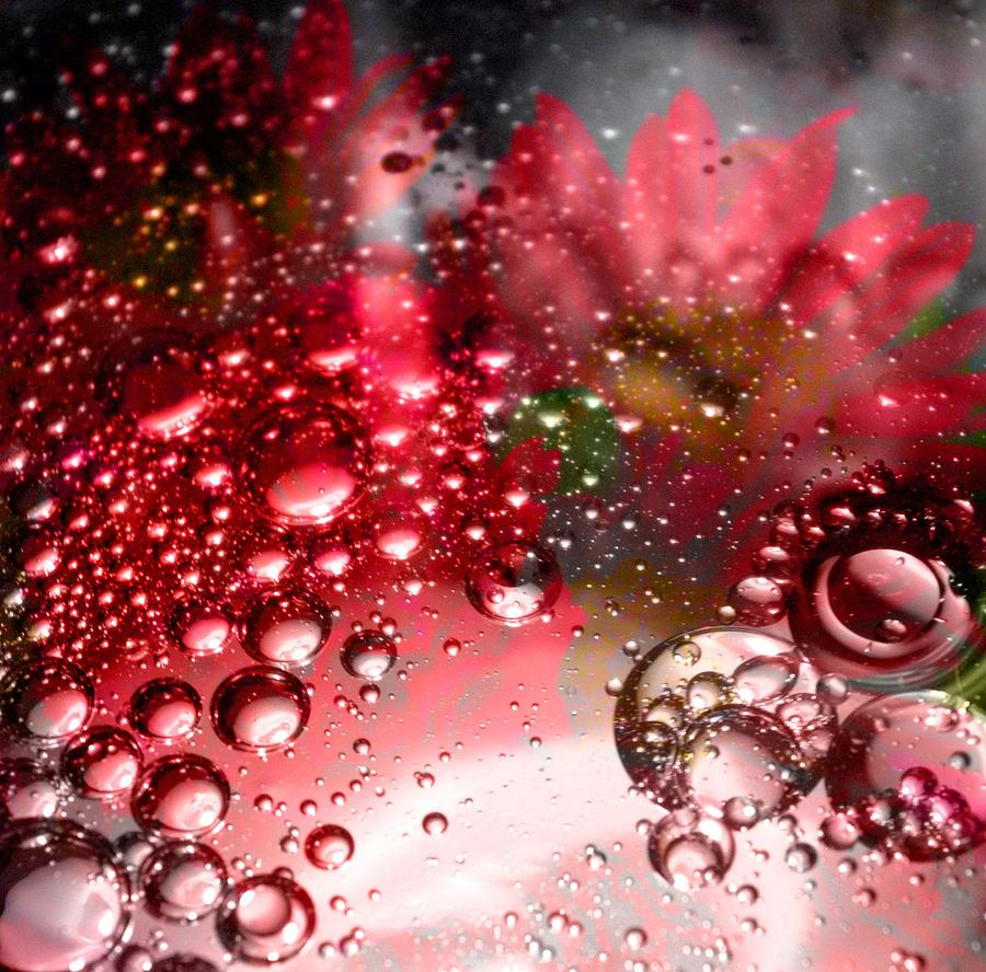 Oil Droplets Digital Art - Inflorescence by Christy Leigh