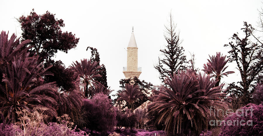 Arab Photograph - infrared Hala Sultan Tekke by Stelios Kleanthous