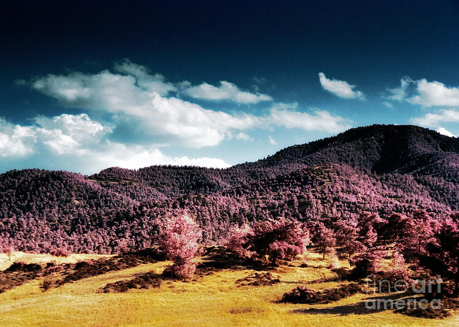 Infrared Troodos Mountains Photograph
