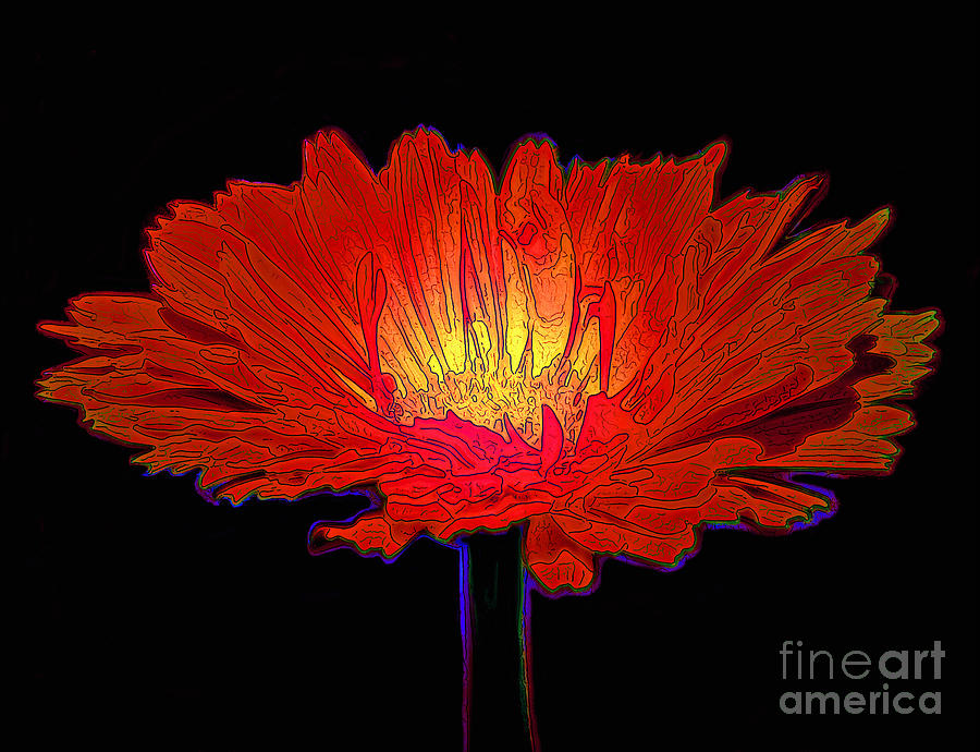 Red Photograph - Inner Glow by George Link