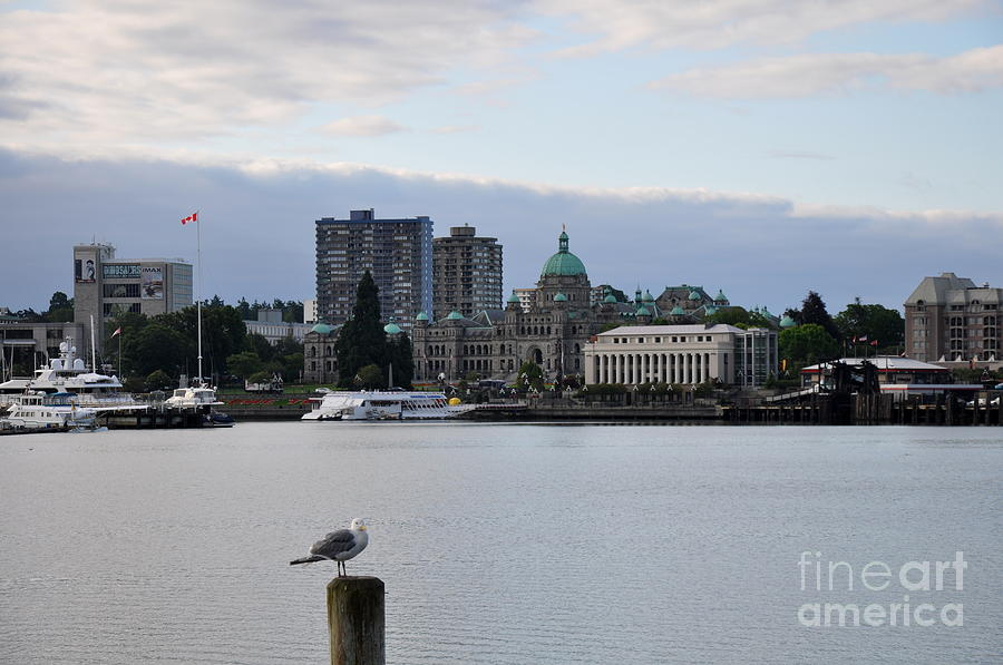 Nautical Photograph - Inner Harbor Victoria Canada  2 by Tanya  Searcy