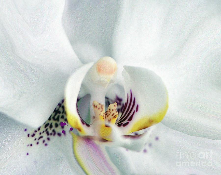 Flower Painting - Inside Job.... by Tanya Tanski