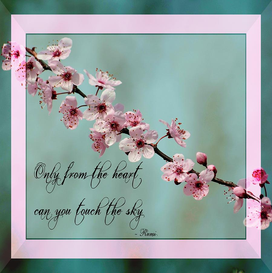 Spring Flower Poems Quotes: Inspirational Spring Floral Photograph By P S