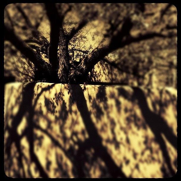 Shadows Photograph - #instagramart #pingram #insta_pick by Paul Cutright