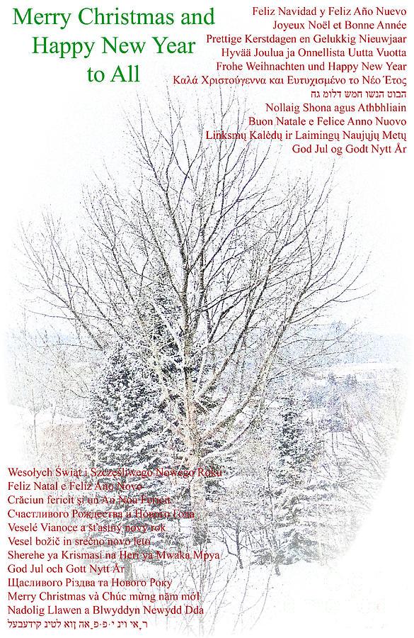 Okotoks Photograph - International Christmas Card by Al Bourassa