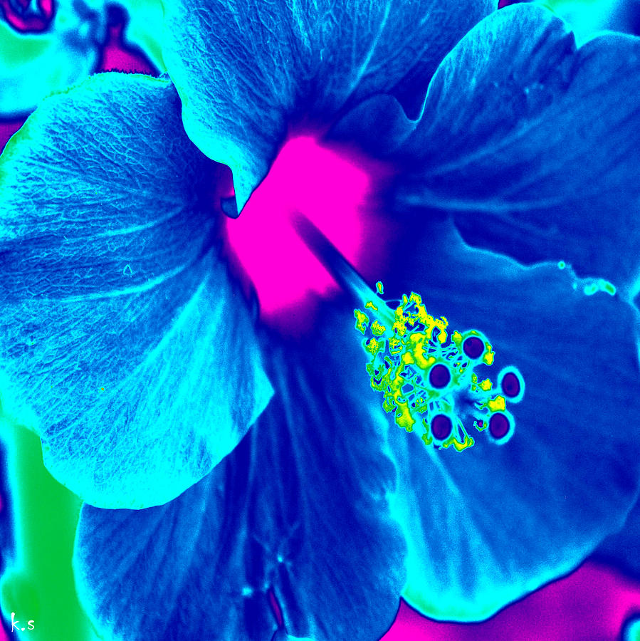 Flower Digital Art - Intimate Blue by Keren Shiker
