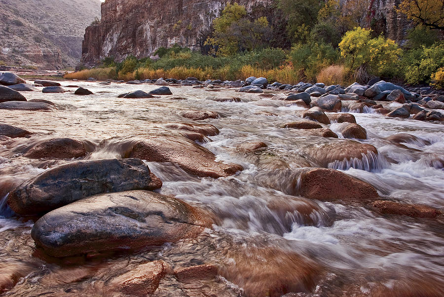 Stream Photograph - Intimate Waters On The Salt River by Dave Dilli