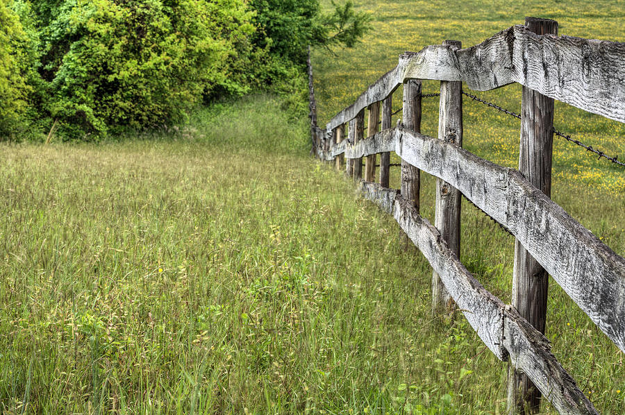 Fence Photograph - Into The Distance  by JC Findley