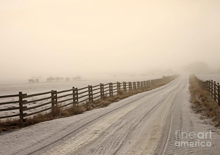 Roads Photograph - Into The Fog by Roland Stanke
