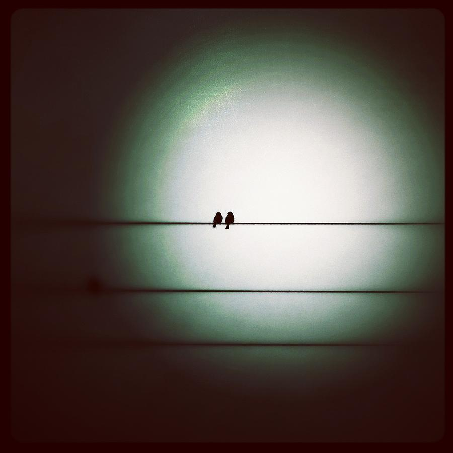 Into The Light Photograph - Into The Light - Instagram Photo by Marianna Mills