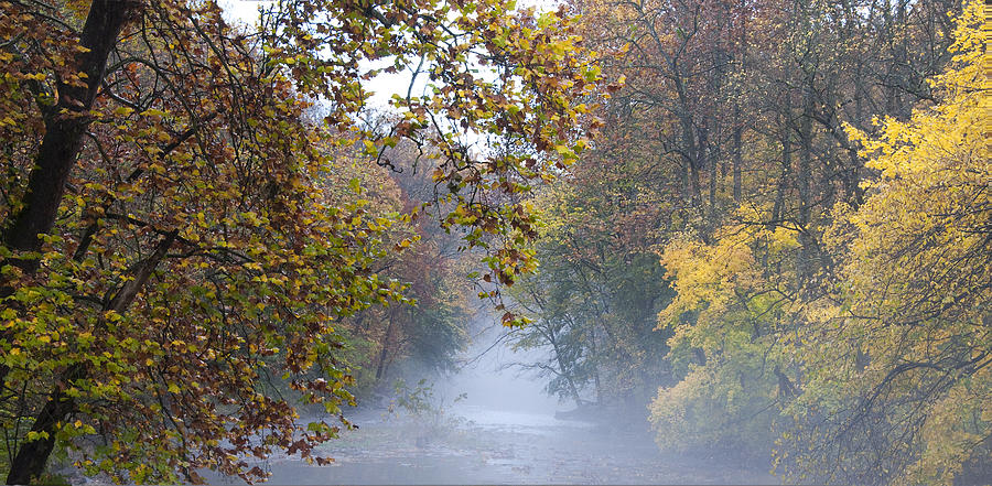 Into The Mist Photograph - Into The Mist by Bill Cannon