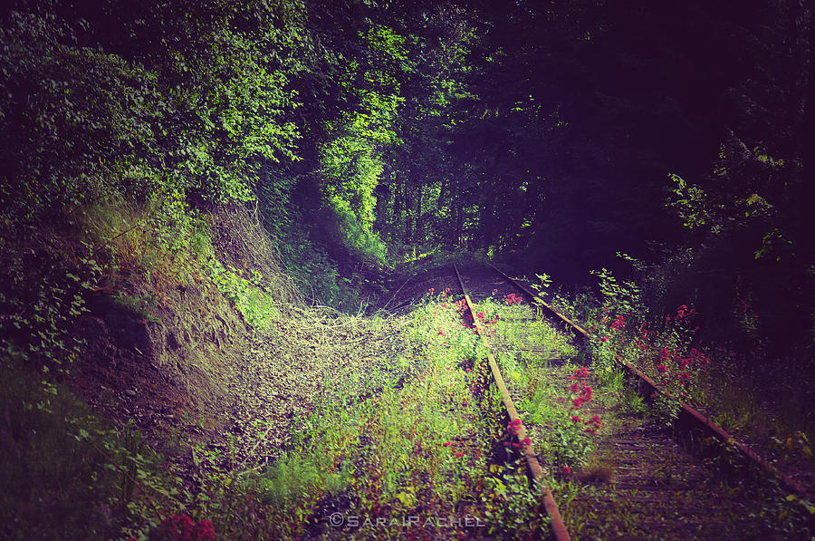 Rail Track Photograph - Into The Unknown by Sarai Rachel