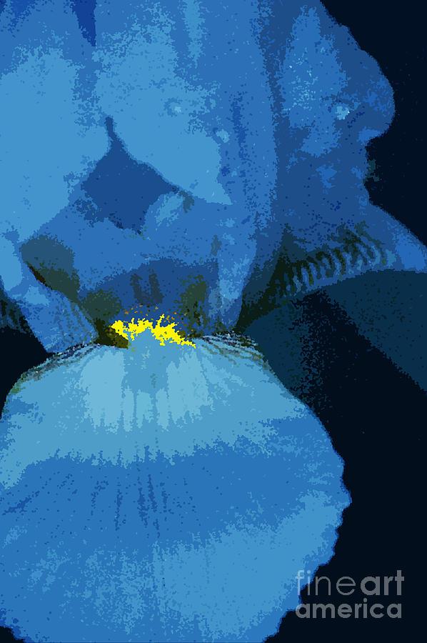 Iris Photograph - Iris Blue by Nancy Mergybrower