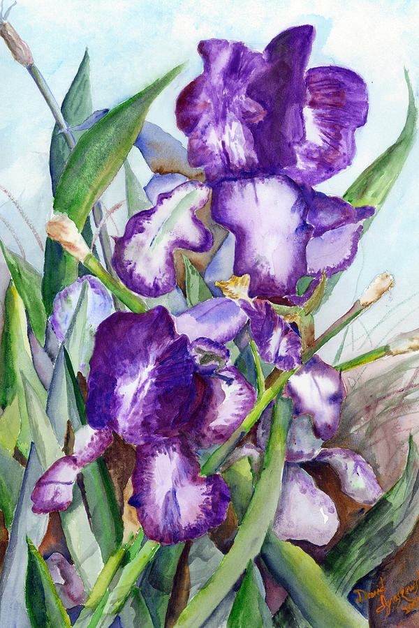 Iris Eyes Painting by David Ignaszewski