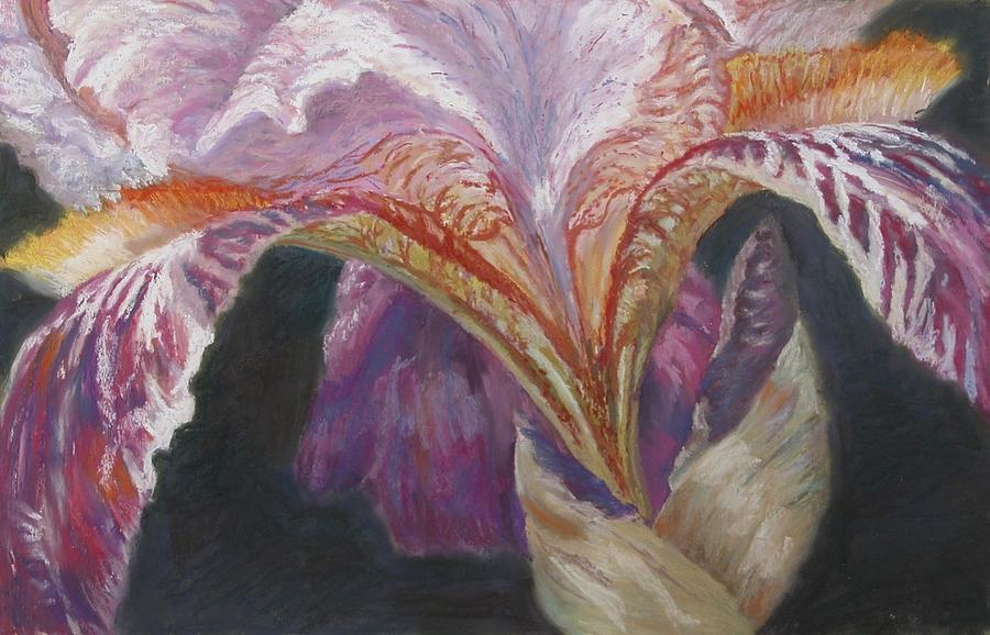 Floral Painting - Iris by Vicki Ross
