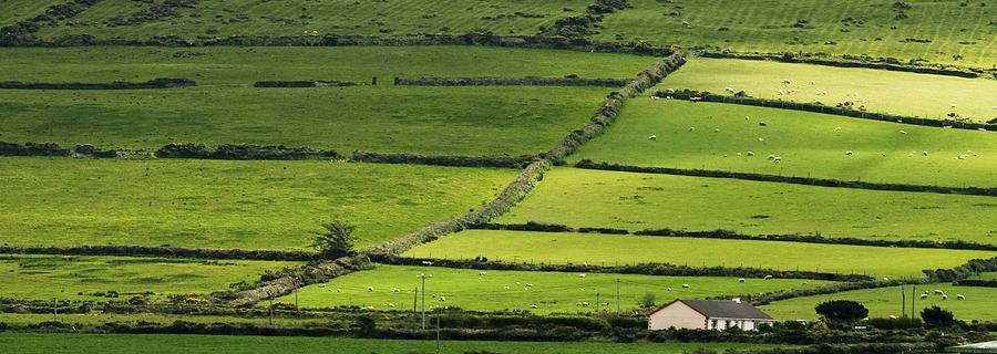 Ireland Photograph - Irish Countryside Near Valenica Island by Larry Pegram