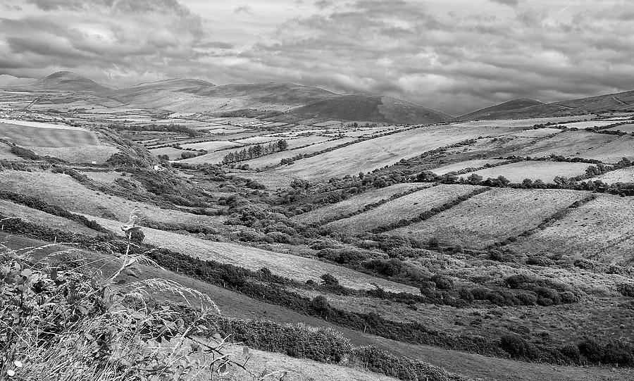 Bw Photograph - Irish Fields by David Resnikoff